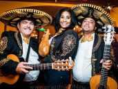 Мексиканская вечеринка   Организация и проведение