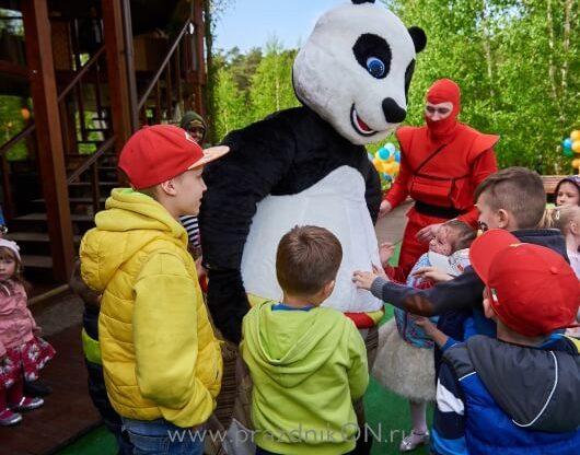 panda-91-530x416