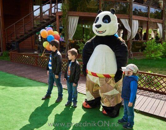 panda-94-530x416