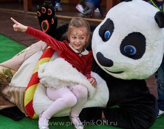 panda-98-530x416